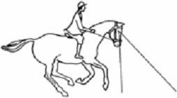 Horsemanship think like a horse rick gore horsemanship ccuart Gallery