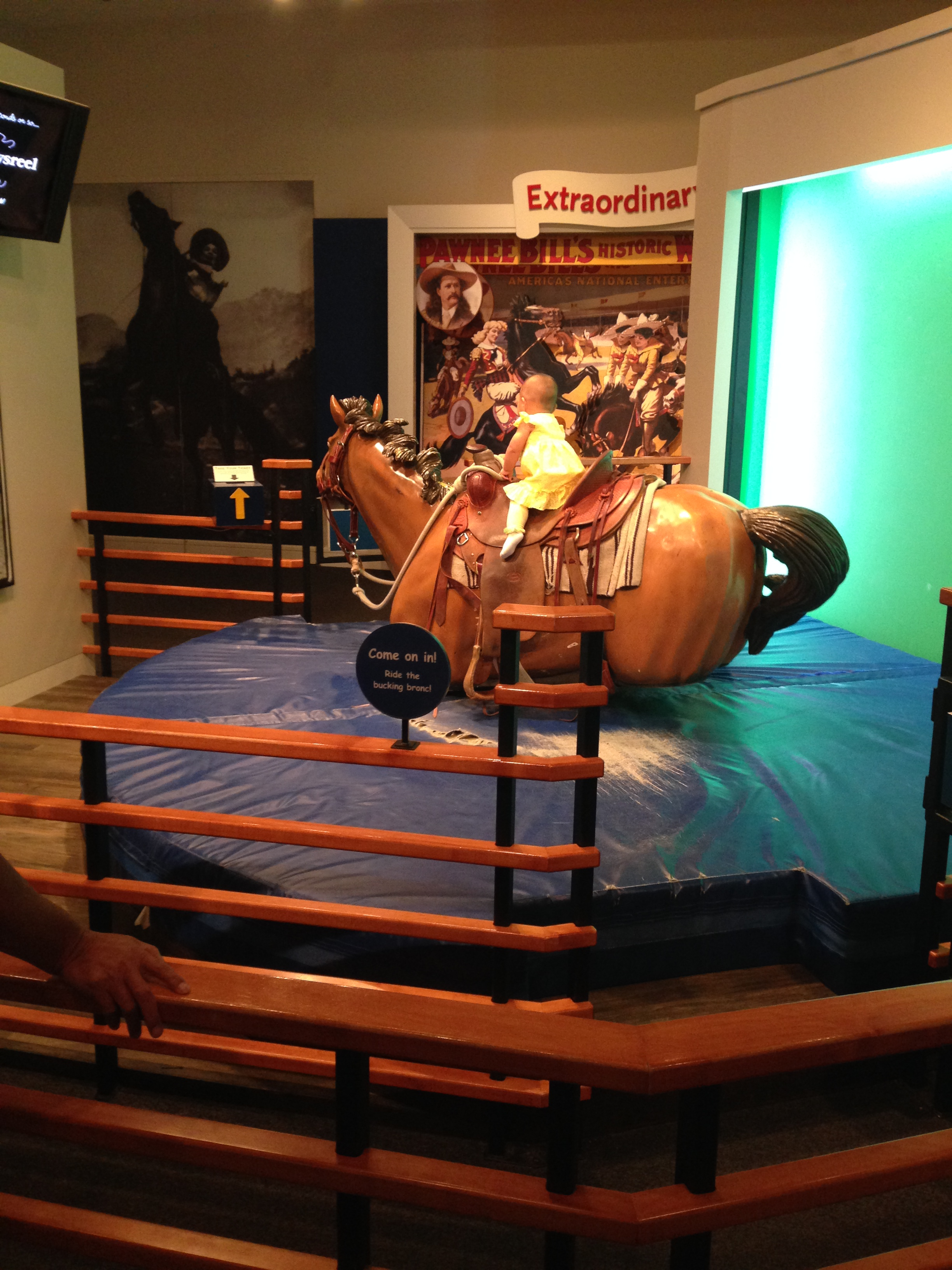 National Cowgirl Museum Think Like A Horse