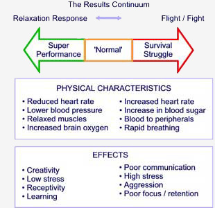 The Neurobiology of Reactions to Stress: Fight or Flight, then Freeze